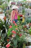 O Shopgirl vende plantas e flores em Dalat, Vietname Imagem de Stock