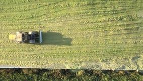 O silator superior da vista tamps o poço do silo com forragem para animais filme