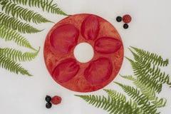 O silicone molda para Foamiran de cores e de texturas diferentes Imagem de Stock Royalty Free
