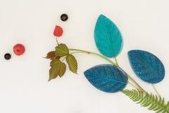 O silicone molda para Foamiran de cores e de texturas diferentes Imagens de Stock Royalty Free
