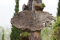O sinal de madeira da exploração agrícola imagem de stock royalty free