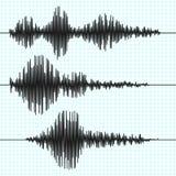 O sismógrafo da frequência acena, seismogram, gráficos do terremoto Grupo do vetor de onda sísmica ilustração royalty free