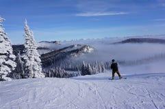 O Snowboarder prende com correias dentro: Pó embalado no resort de montanha do peixe branco fotografia de stock royalty free