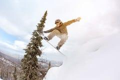 O Snowboarder salta o freeride offpiste da floresta Imagens de Stock