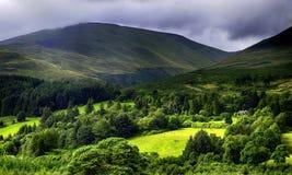 O sol brilha completamente no campo escocês Imagens de Stock