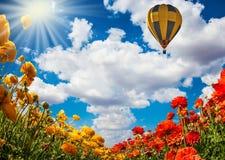 O sol da mola quente fotografia de stock royalty free
