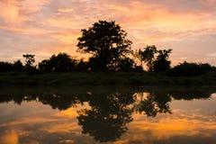 O sol da noite Imagens de Stock