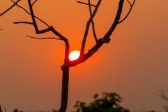 O sol da noite obtém o horizonte Fotos de Stock