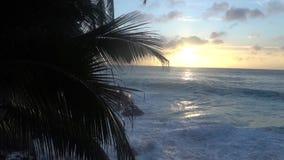 O sol de ajuste contra o Oceano Índico em Seychelles filme