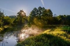 O sol de aumentação sobre a floresta e o rio Imagens de Stock Royalty Free