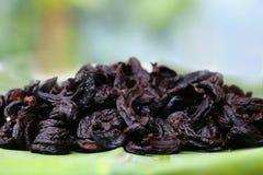 O sol de Goraka da guta do Garcinia secou frutos imagem de stock
