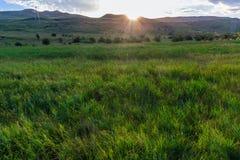 O sol devido à montanha em um prado verde Foto de Stock