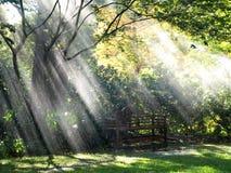 O sol e a chuva foto de stock