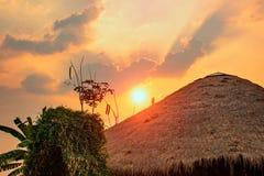 O sol está perto da luz dourada foto de stock royalty free