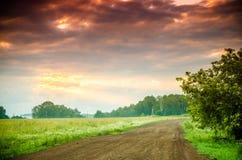 O sol levanta-se acima das nuvens do mar e do ouro floresta que esconde na n Trajeto de floresta fotografia de stock