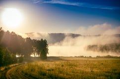 O sol levanta-se acima das nuvens do mar e do ouro floresta que esconde na n Trajeto de floresta imagens de stock royalty free