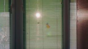O sol que brilha atrás das cortinas filme
