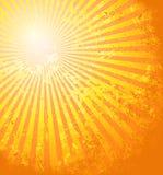 O sol quente do verão Fotografia de Stock
