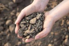 O solo seco e sem-vida não pode sustentar a vida Fotos de Stock