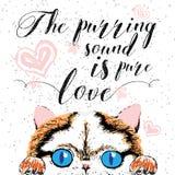 O som de ronrom é amor puro, cartão tirado mão, rotulando citações inspiradores da caligrafia para amantes do gato e o projeto ti Imagens de Stock Royalty Free