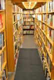 O sonho de um bibliófilo Fotografia de Stock Royalty Free