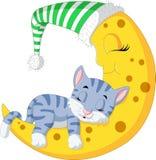 O sono do gato na lua ilustração do vetor