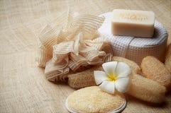 O special esfrega o sabão nos termas ajustados para a pele saudável Foto de Stock