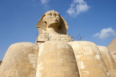 O Sphinx fotos de stock royalty free
