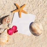 O starfish da areia da praia do papel em branco descasca o verão Fotos de Stock Royalty Free