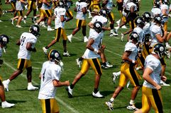 O Steelers Fotografia de Stock