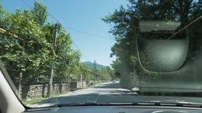 O suíno anda lentamente na frente do carro na estrada, Geórgia video estoque