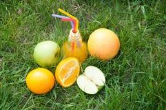 O suco fresco na lâmpada deu forma às laranjas frescas próximas de vidro, maçãs na grama verde Foto de Stock Royalty Free
