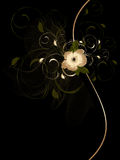O sumário acena com ornamento floral Fotografia de Stock Royalty Free