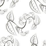 O sumário planta o teste padrão sem emenda de preto e branco ilustração stock