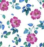 O sumário vívido cor-de-rosa floresce o teste padrão sem emenda ilustração royalty free