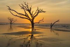 O sunburst brilhante ilumina a praia da ilha de Edisto na ilha de Edisto perto de Charleston, SC imagem de stock