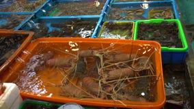 o suporte tradicional do mercado do marisco de 4K Ásia vende alimentos frescos no mercado de peixes de Fuji vídeos de arquivo