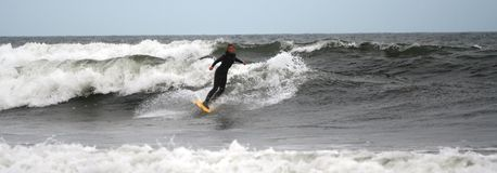 O surfista da menina monta as ondas Imagens de Stock