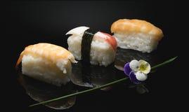 o sushi é uma forma de arte a ser descoberta Imagens de Stock Royalty Free