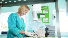 O técnico de laboratório que estuda, examina sementes brotadas, enraizadas do milho, no laboratório Pesquisa do laboratório de ci