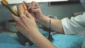 O técnico dental remove a cera adicional da dentadura com um escalpelo Imagens de Stock Royalty Free