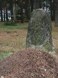 O túmulo no cemitério velho dos soldados da primeira guerra mundial 1916 anos Foto de Stock Royalty Free