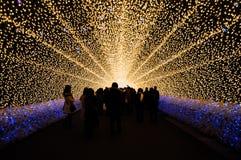 O túnel da luz em Nabana nenhum jardim de Sato na noite no inverno, Fotografia de Stock