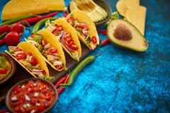 O taco mexicano com carne da galinha, jalapeno, legumes frescos serviu com guacamole fotos de stock royalty free
