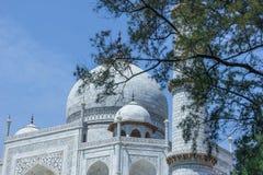 O Taj Mahal Fotos de Stock