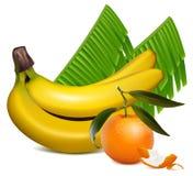 O tangerine fresco frutifica com folhas e o banan verdes Fotografia de Stock