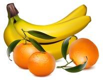 O tangerine fresco frutifica com folhas e o banan verdes Fotografia de Stock Royalty Free