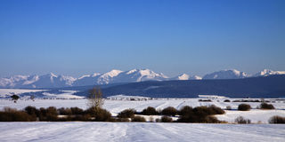 O Tatras alto Fotos de Stock Royalty Free