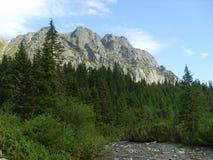O Tatras alto em Eslováquia - um dia ensolarado imagens de stock
