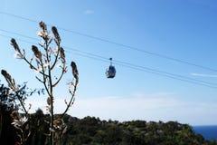O teleférico no céu no plano doido em Alanya Turquia Dia ensolarado, plantas no foco Fotos de Stock